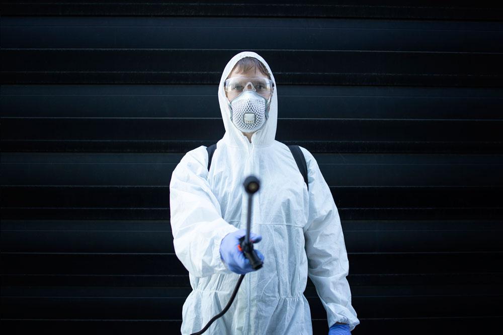 Control de plagas en Huelva y Cádiz