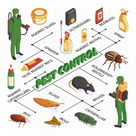 Consultoría Alimentaria
